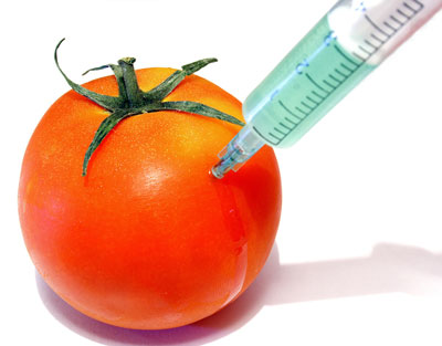 Genetically-Modified-Foods-1