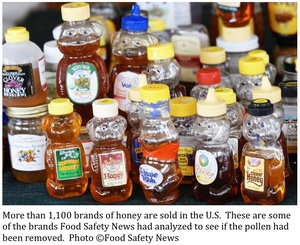 75 Percent of all 'Honey' Sold in Stores Contains no Honey at All