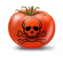 Top 10 Genetically Modified Foods To Avoid Eating