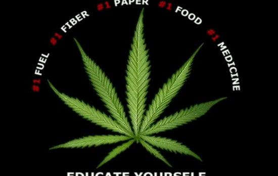 educateyourself-550x386