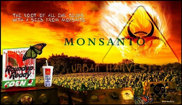 Why Does Monsanto Always Win?