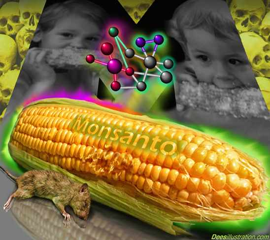Egypt Resists Monsanto's Genetically-Modified Maize
