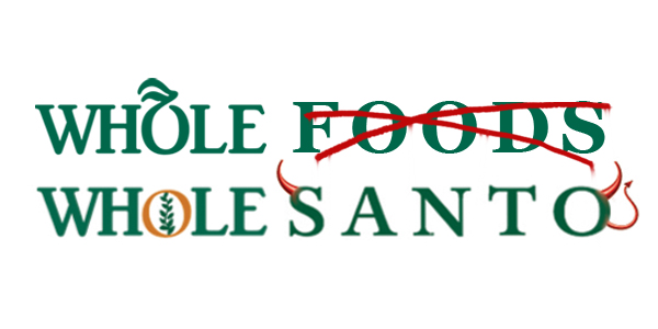 Whole Foods Confirms it Knowingly Sells Monsanto's Genetically Modified Corn