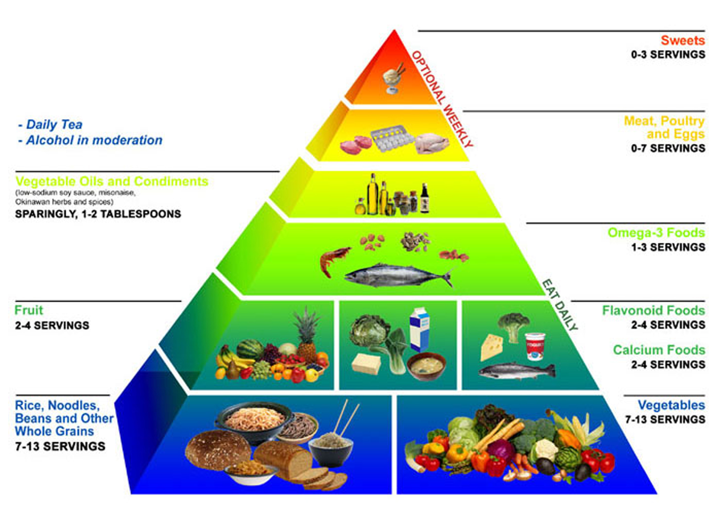 the impact of diet on health essay