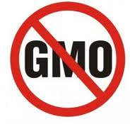 Regulators Discover a Hidden Viral Gene in Commercial GMO Crops