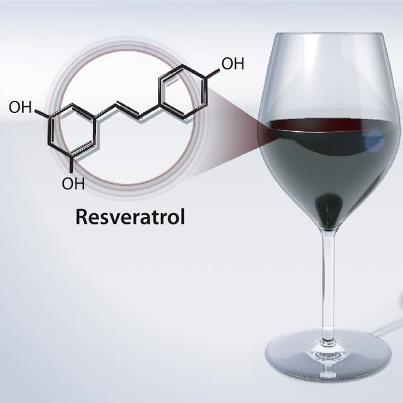 New Drug Being Developed Using Compound Found in Red Wine 'Could Help Humans Live Until They are 150'