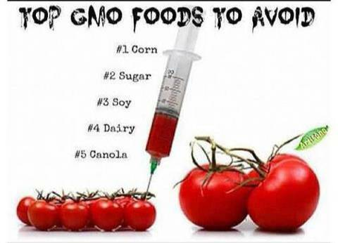This is Why You Should Stay Away From All GMO‏ Foods