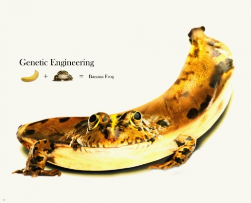 Insane Cases of Genetic Engineering