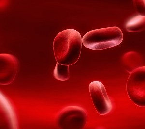 red-blood-cells-300x266