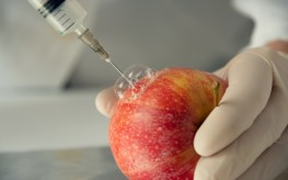 gmo_apple_syringe-263x164