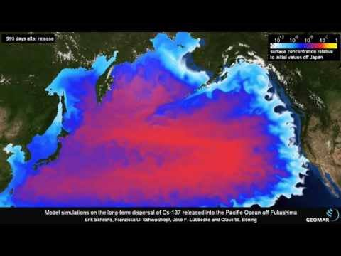 Fukushima: Your Days of Eating Pacific Ocean Fish Are Over