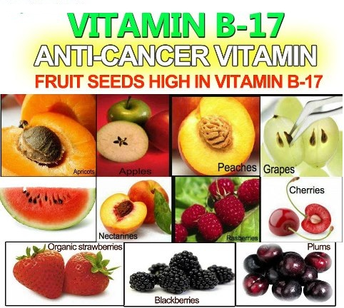 Nature's Cancer Prevention – Vitamin B17‏