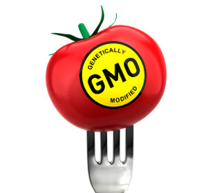 GMO_Labeled_Tomato