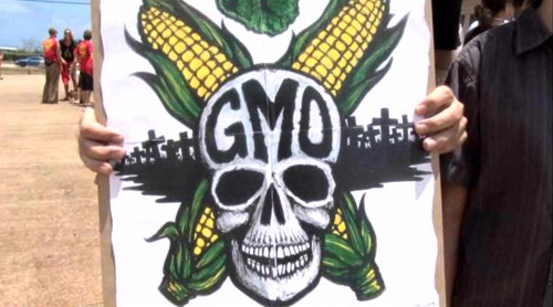 """Hawaii's Kaua'i County Passed Bill in Support of the People's """"Right to Know"""" About Pesticide and GMO Seeds Used in Their Community"""