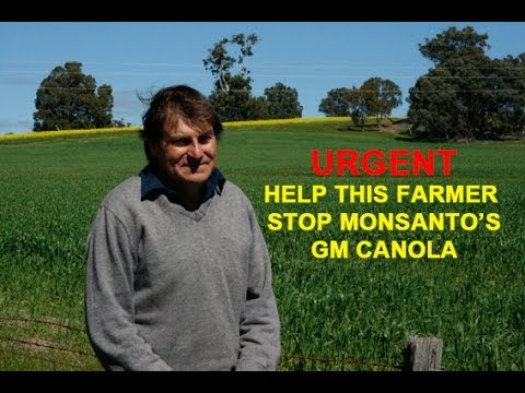 Landmark Case: GMO Contamination of Organic Farm Spurs Lawsuit