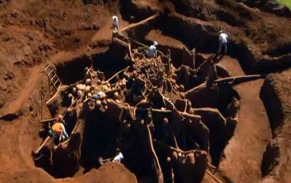 Giant Ant Colony Excavated, You Won't Believe What They Build Underground