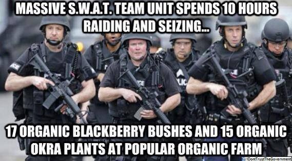 SWAT Team Raids Organic Farm, Confiscates Blueberries