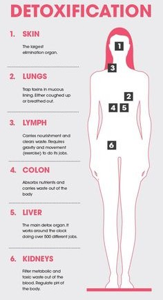 6 Ways Your Body Detoxifies Itself