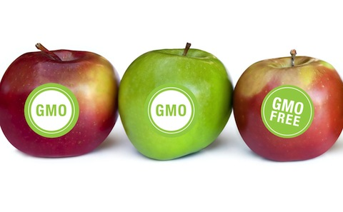 Vermont Senate Approves GMO Labeling Law