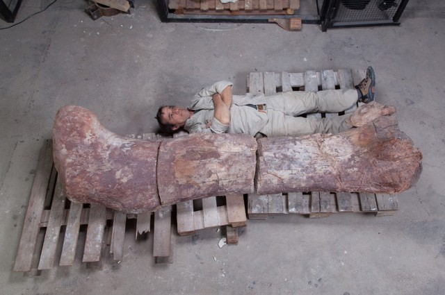 World's Biggest Dinosaur Discovered