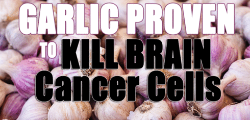 Garlic Proven To Kill & Prevent Brain Cancer