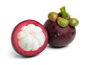 mangosteen112-small