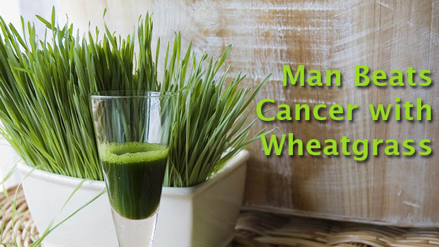 Healed By Wheatgrass: 74-year Old Man Won The Fight Against Cancer