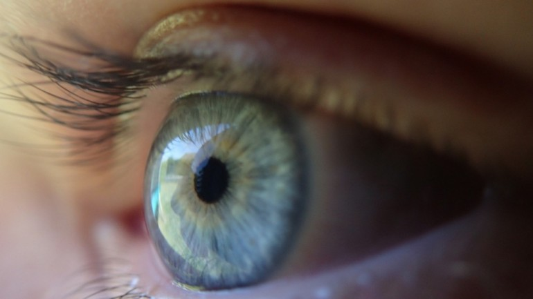 8 Foods To Eat For Healthier Eyes