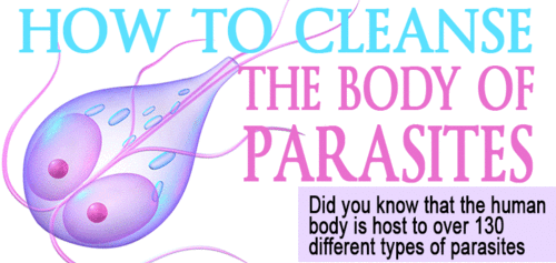 Cleansing The Body of Parasites