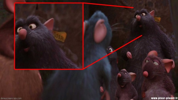 Disney-A113-Secret-Code-7-a-tag-on-one-of-the-rats-in-Ratatouille