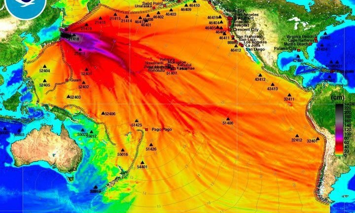 What The MSM Isn't Telling You…The Pacific Ocean is Dying