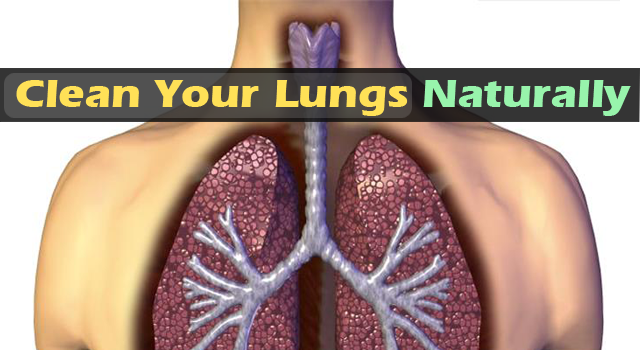 Clean-Your-Lungs-From-Nicotine-Naturally