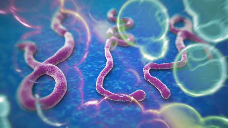 1st US Ebola Patient Dead !! Why Hasn't The MSM Told Us?