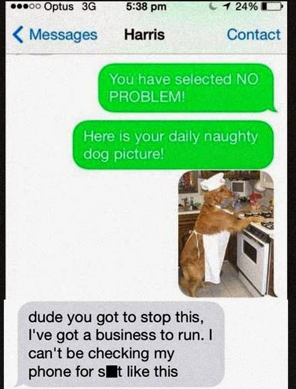 Guy Receives A Text Scam. His Reaction He Sends Back The Best Reply Ever