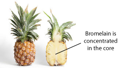 Research: Pineapple Enzyme Kills Cancer Without Killing You