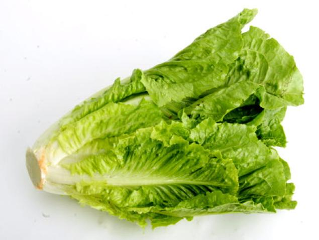 Romaine-Lettuce-Photos