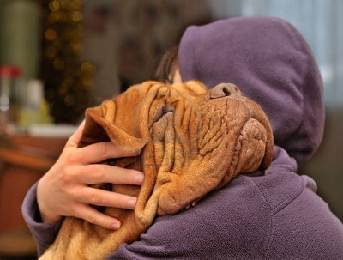 6265698-loving-and-hugging-a-dog (1)