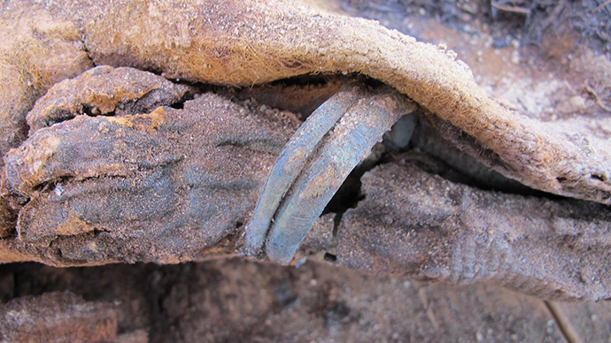 Egyptian Cemetery with 1 Million Bodies Stumps Scientists Egypt-million-mummies-discovered.si_