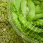 New Study Finds GMO Soy Toxic to Kidneys, Liver, and Reproduction