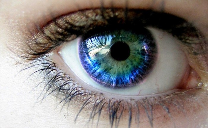 This Is How Human Eyes Get Their Color, and It's Simply Amazing