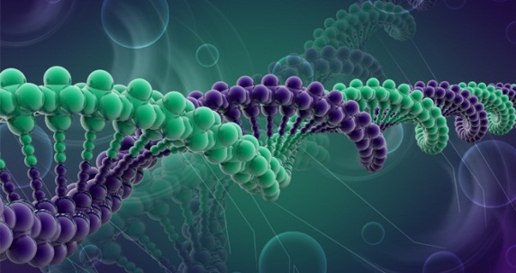 JUNK DNA IS NOT JUNK AFTER ALL