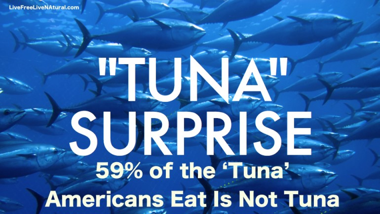 59% of The 'Tuna' Americans Eat Is Not Tuna