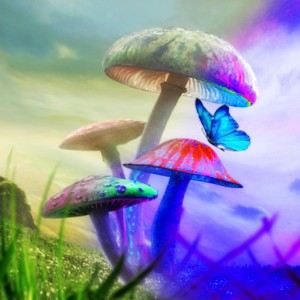 PSILOCYBIN Mushrooms Show 80% Success Rate For Quitting Smoking