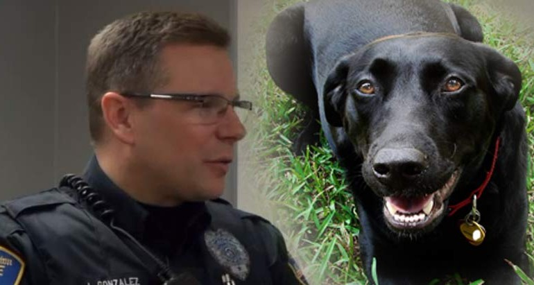 Cop Saves a Woman's Life After Choosing to Understand a Dog Instead of Shooting It