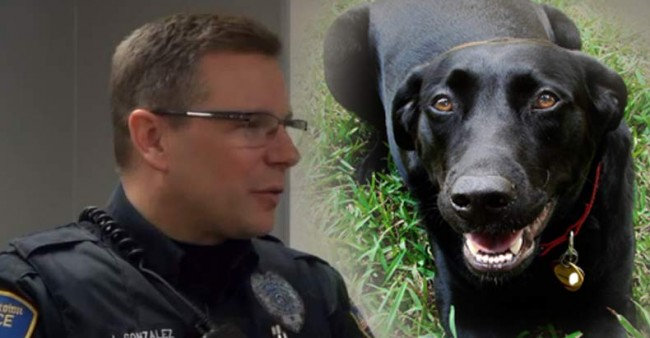 dog-and-cop-save-womans-life