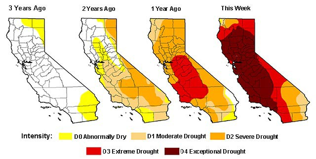 America To Lose 35% of Its Fresh Produce When California Runs Out of Water