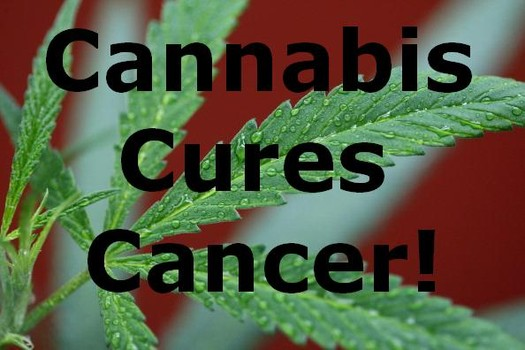 Biologist Explains How Marijuana Causes Tumor Cells To Commit Suicide