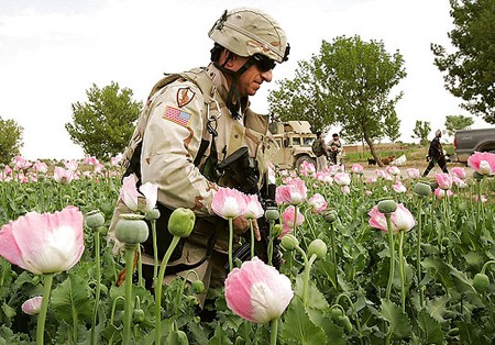 Afghan Opium Production Rises As Ex-Blackwater Profits