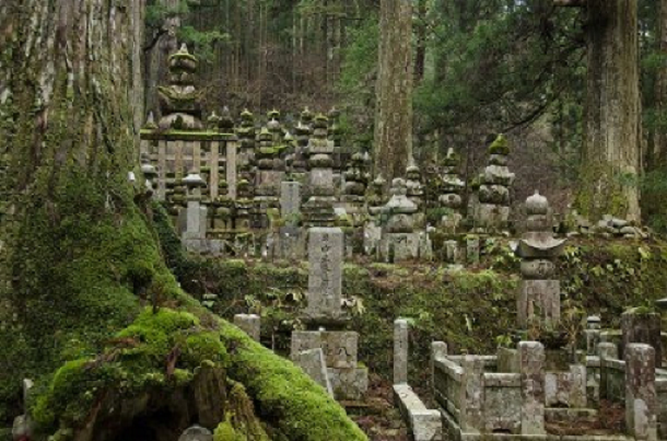 Okuno-in-Cemetery-Mt.-Koya-Japan
