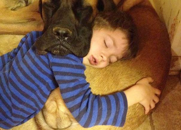 Like Owner, Like Pet